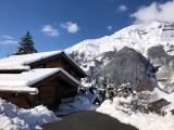 lgp-ext-hiver-ii-117755