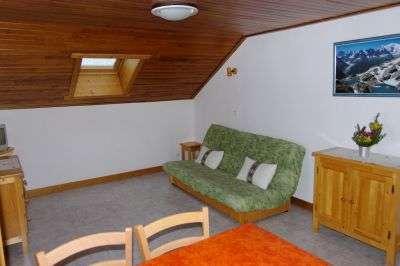 nid-alpin-espace-sejour-1249